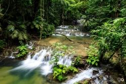 Baños de Palenque